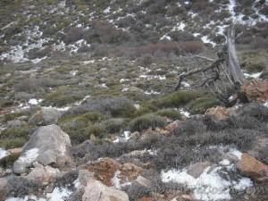 Sierra-de-Lujar-08