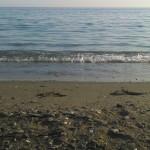 Playa Melicena 5