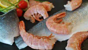 fish-1244341_640