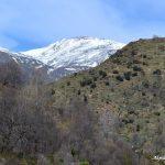 Foto del barranco de poqueira desde Pampaneira con vistas a la sierra nevada.